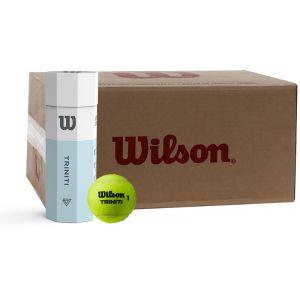 Wilson Triniti Bal 24x3 St.